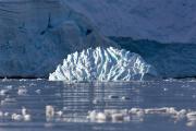 Antarctic-Brain-Glacier-©2019-Lauri-Novak