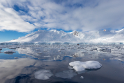 Antarctic-Charlotte-Bay-Reflections-©2019-Lauri-Novak