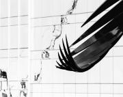 Constellation-Curl-Construction-Crane-©Lauri-Novak