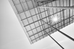 Art-Institute-Modern-Wing-Roof-©2016-Lauri-Novak