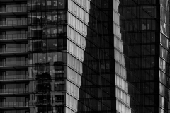 Chicago-Fine-Art-Architecture-4