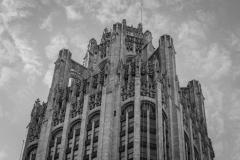 Chicago-Fine-Art-and-Architecture-8