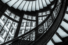 Rookery-Stairs-and-Railings-©2019-Lauri-Novak