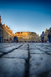 Grand-Place-Perspective-Brussels-©Lauri-Novak