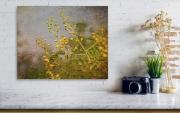 little-yellow-flowers-lauri-novak